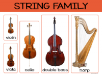 string-family-sm.png