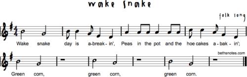 Wake Snake